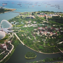 View From the Top of the (Singapore) World