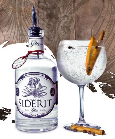 coktail_gin_tonic